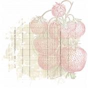 Strawberry Fields- Paint 14