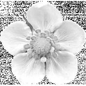 Flower Template 13