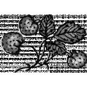 Fruit Template 007