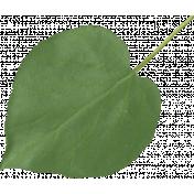 Strawberry Fields- Green Leaf