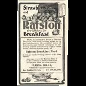Strawberry Fields- Advert