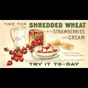 Strawberry Fields- Postcard