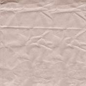 Autumn Day- Pink Crinkled Bag Paper