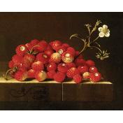 Strawberry Fields- Strawberry Flower Card 02