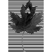 Leaf Template 016