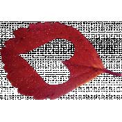 Thankful Heart- Red Leaf1