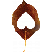 Falling For You- Brown Leaf 1