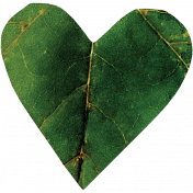 Falling For You- Green Leaf Heart 4