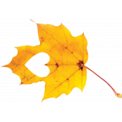 Falling For You- Yellow Leaf 7