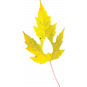 Falling For You- Yellow Leaf 4