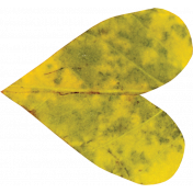 Falling For You- Yellow Leaf Heart 3