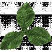 Let's Get Festive- Green Leaf Cluster
