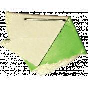 Green Stapled Cardboard