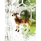 Camping 3x4 Card Deer