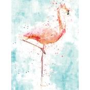 Good Life: June- 3x4 card- flamingo