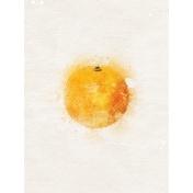 Orange 3x4 Card