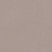 Cashmere & Cocoa Solid Tan Paper