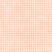 Shabby Wedding- Gingham Peach