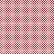 Robbie's Rockin Red- Checkerboard Plaid Paper 02