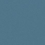 Gentle Blooms- Solid Blue Paper