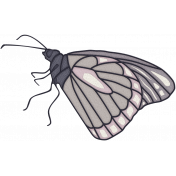 In Her Memory Mini Kit- Butterfly