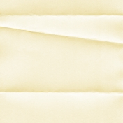 Daisy- Folded Paper