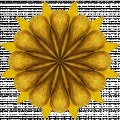 Autumn Flower 09