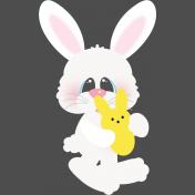Hello Easter- Bunny 02