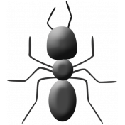 A Bug's World- ant