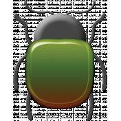 A Bug's World- beetle