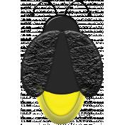 A Bug's World- lightning bug