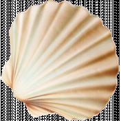 Down Where It's Wetter 2- seashell 1