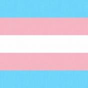 In the Name of Love- Transgender Paper