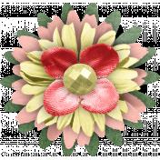 Full Bloom Flower 05
