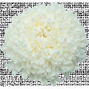 TAS Be Happy It's Spring Flower 2