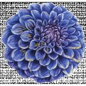 Floral Elegance Floral Transfer 4
