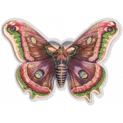 Spring Day Collab- May Flowers Butterfly Moth