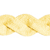 Into the Woods- Yellow RicRac Ribbon