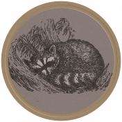 Into the Woods- Racoon Round Tag