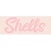 Destination Florida Beach Shells Word Art
