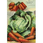 Garden Tales Journal Cards- Cabbage and Carrots 4x6