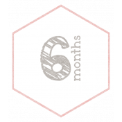 Baby Shower 6 Months Pink Hexagon Tag