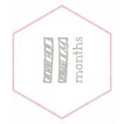 Baby Shower 11 Months Pink Hexagon Tag