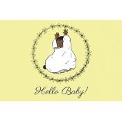 New Day Baby Hello Baby 02 JC 4x6