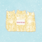 Sunshine and Snow Kittens Journal Card 4x4