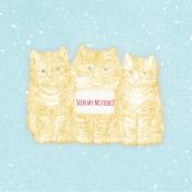 Sunshine and Snow Kittens JC 4x4