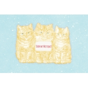 Sunshine and Snow Kittens Journal Card 4x6