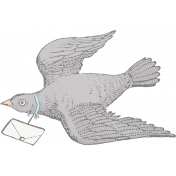 Love Knows Bird with Letter
