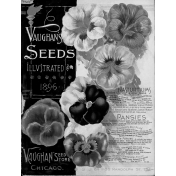 Spring Day Templates- Seed Catalog Cover
