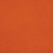 Orchard Traditions Orange Solid Paper